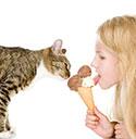 stichting-gezond-hond-kat-likt-ijs