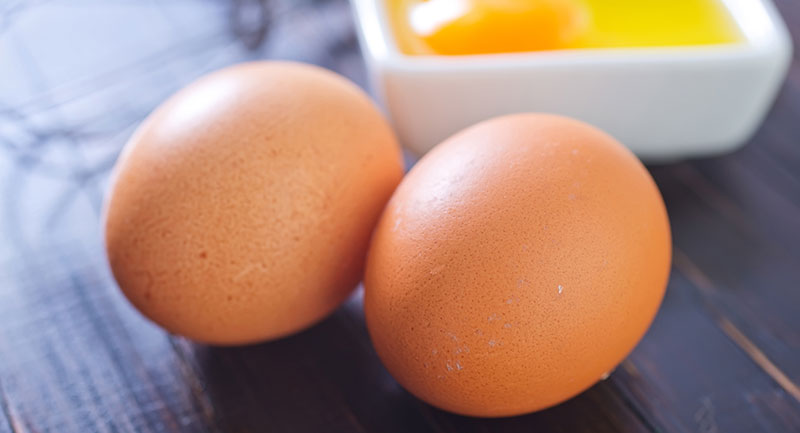 stichting-gezondheid-eieren