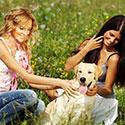 stichting-gezondheid-hond-verwennen