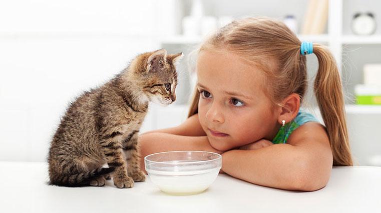 stichting-gezondheid-meisje-met-kat
