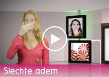 videotegel.fw
