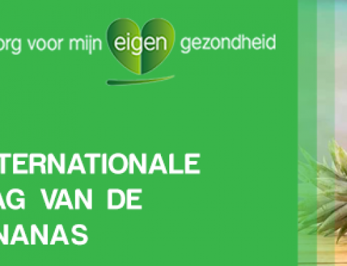 Internationale dag van de ananas (27 juni)