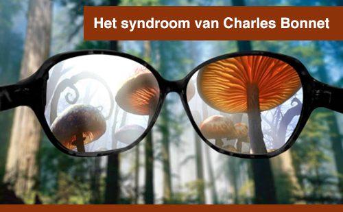 Het syndroom van Charles Bonnet