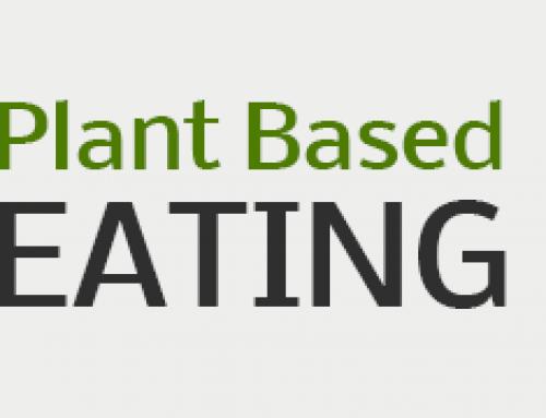 Op Planten Gebaseerde Voeding