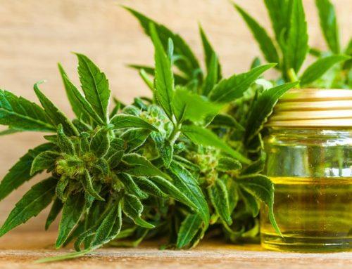 De impact van cannabisolie op de gezondheid; feiten en fabels